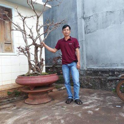 Hồ Tuấn Lai